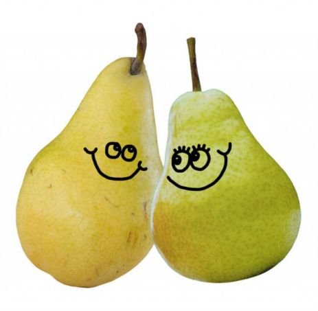 a-pair-of-pears-600w