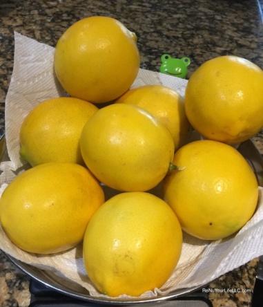 01-meyer-lemons-optm